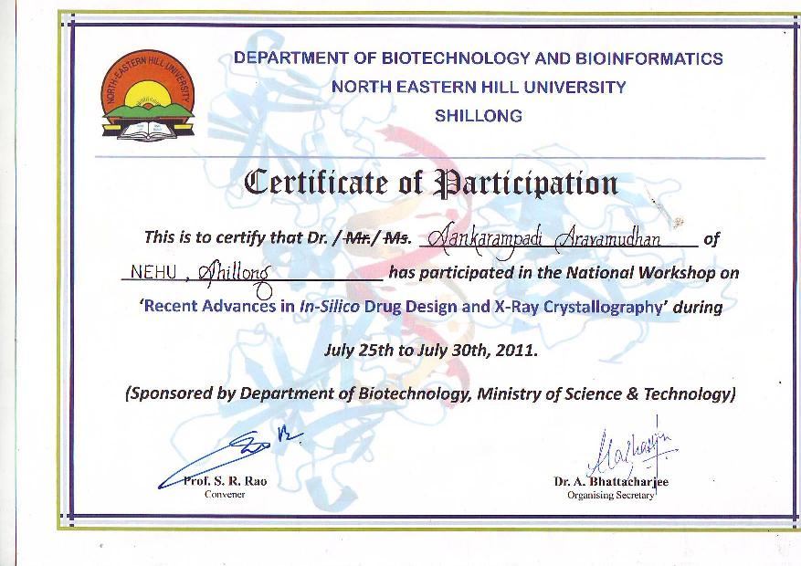 Selected Pages for the View – Certificate of Participation Format